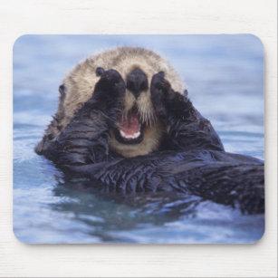 Alfombrilla De Ratón Nutria de mar linda el | Alaska, los E.E.U.U.