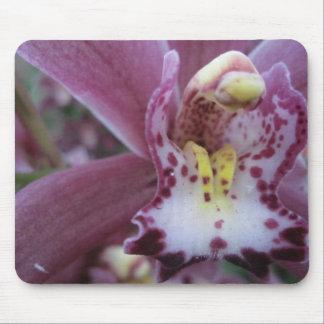 Alfombrilla De Ratón Orquídea color de rosa Mousepad del Cymbidium