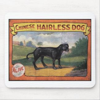 Alfombrilla De Ratón Perro sin pelo chino