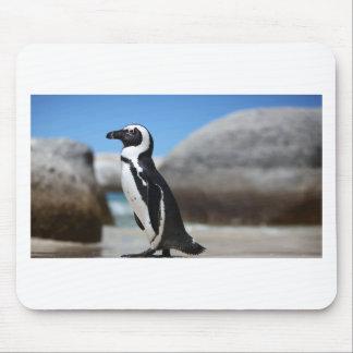 Alfombrilla De Ratón Pingüino africano