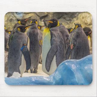 Alfombrilla De Ratón Pingüinos en el mousepad del parque zoológico
