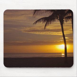 Alfombrilla De Ratón Salida del sol en la Florida