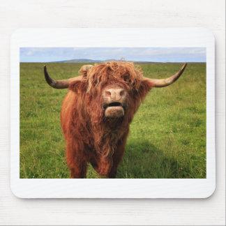 Alfombrilla De Ratón Scottish país de drogado Cattle - Scotland