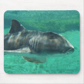 Alfombrilla De Ratón Tiburón de Jackson del puerto