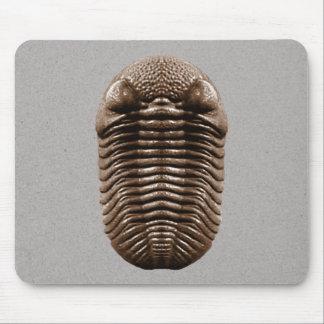 Alfombrilla De Ratón Trilobite Mousepad