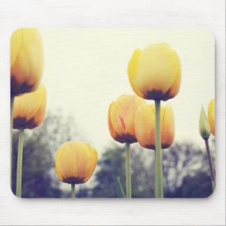 Alfombrilla De Ratón tulipanes