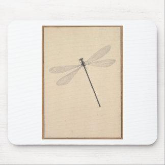 Alfombrilla De Ratón Una libélula, por Nicolás Struyk, temprano décimo