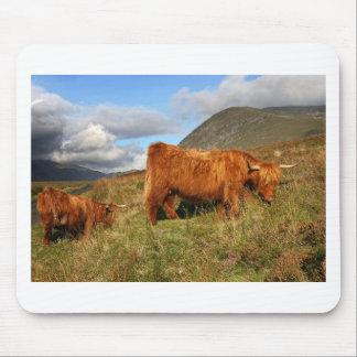 Alfombrilla De Ratón Vacas escocesas de la montaña - Escocia