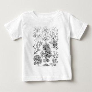Algas de Brown Camisetas