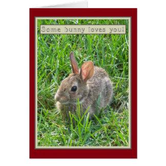 Algún conejito le ama tarjeta de nota tarjeta de felicitación