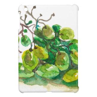 Algunas uvas