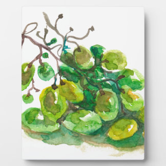 Algunas uvas placa expositora