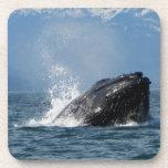 Alimentación de la ballena jorobada posavasos