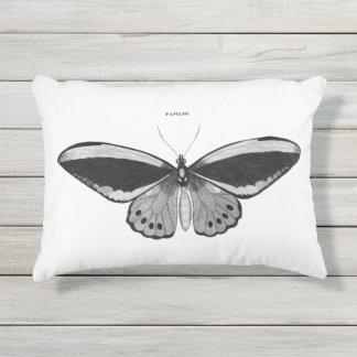 Almohada al aire libre de la mariposa