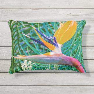 Almohada al aire libre, diseño de la ave del