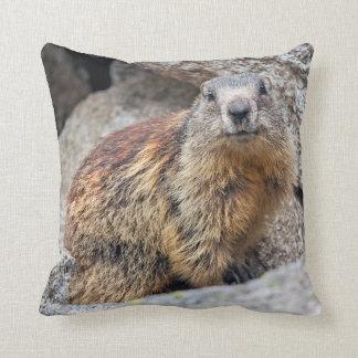 Almohada alpina de la marmota