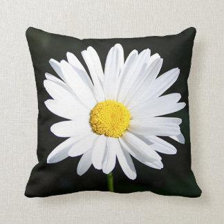 Almohada blanca enorme de la flor de la margarita