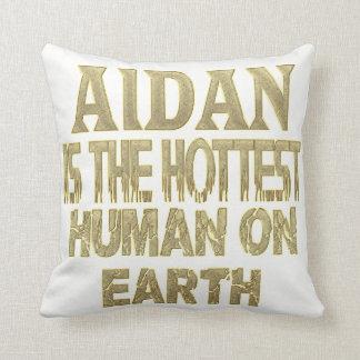 Almohada de Aidan