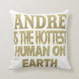 Almohada de Andre