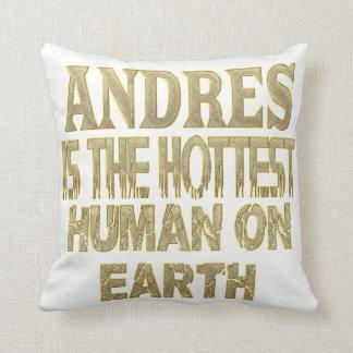 Almohada de Andres