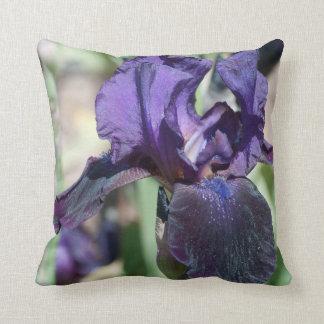 Cojín Decorativo Almohada de dos iris
