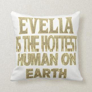 Almohada de Evelia