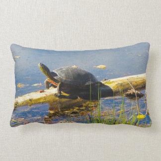 Almohada de la tortuga