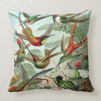 Almohada de los colibríes de Haeckel