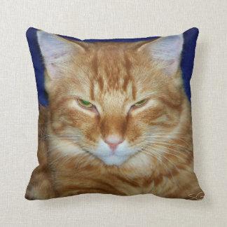 Almohada de tiro anaranjada gruñona del gato de