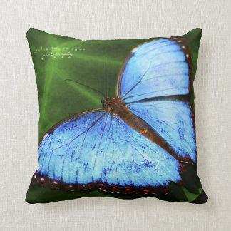 Almohada de tiro azul hermosa de la mariposa