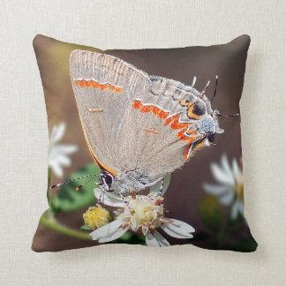 Almohada de tiro azul oscura de la mariposa de