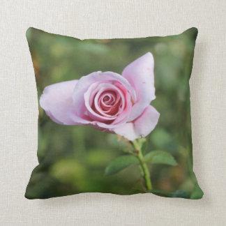 Almohada de tiro color de rosa hermosa de la flor