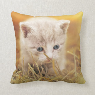 Almohada de tiro curiosa del gatito
