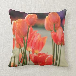 Almohada de tiro de los tulipanes de la primavera