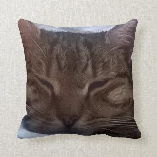 Almohada de tiro del gato