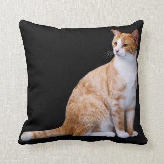 Almohada de tiro del gato del jengibre