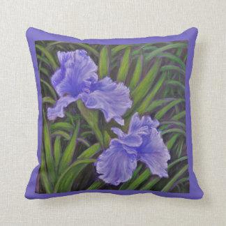 Almohada de tiro del iris