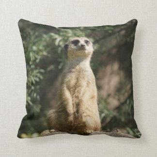 Almohada de tiro linda de Meerkat