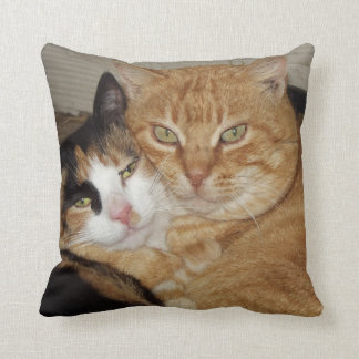 Almohada Decorativa  Gatos