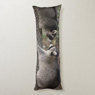 Almohada del cuerpo del mapache
