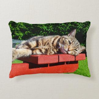 Almohada del gato de Tabby