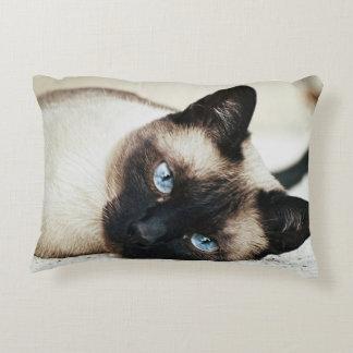 Almohada del gato siamés