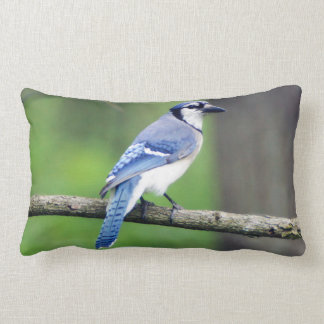 Almohada del Lumbar del arrendajo azul