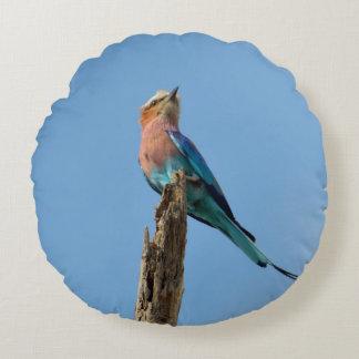 Almohada del pájaro del rodillo cojín redondo