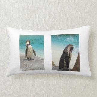 Almohada del pingüino