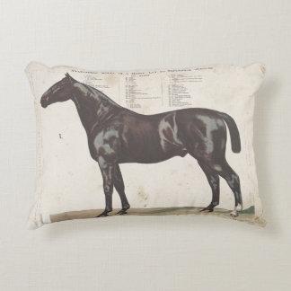 Almohada hermosa del caballo del vintage