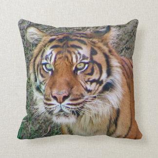 ¡Almohada hermosa del tigre! Cojín Decorativo