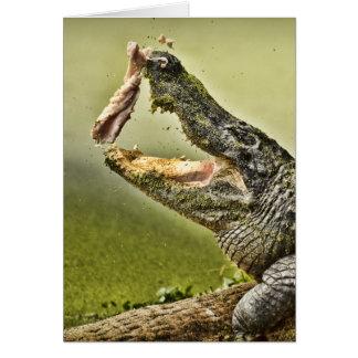 Almuerzo de cogida del cocodrilo tarjeta de felicitación