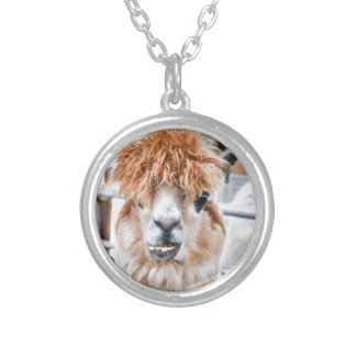Alpaca Collar Plateado