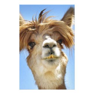 Alpaca con el pelo loco papelería